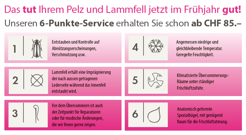 6-Punkte-Service